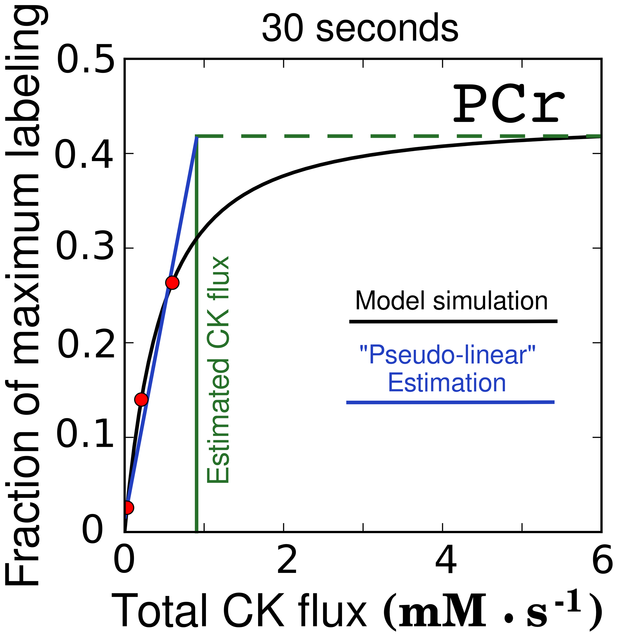 Demonstration of saturation of PCr labeling at higher CK fluxes.
